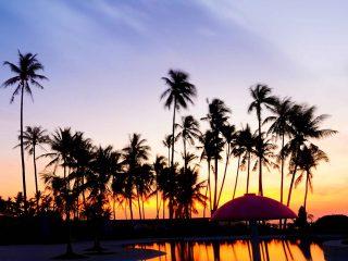 Best Western Sandbar Cebu